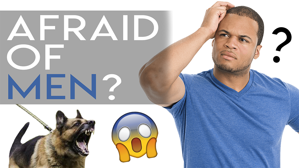 Why Some Dogs Are Afraid of Men